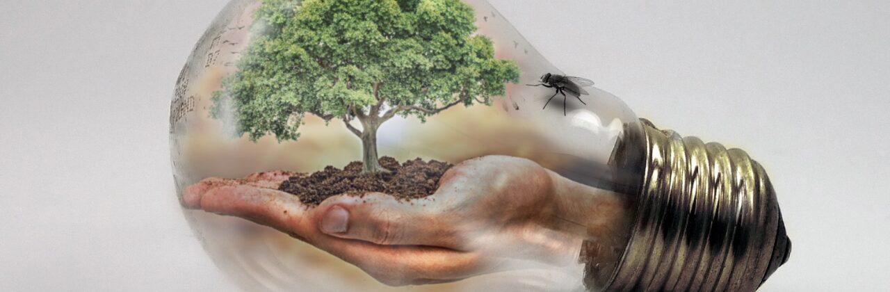 Urgence climatique : les Ensmatiques œuvrent à la transformation de leur formation
